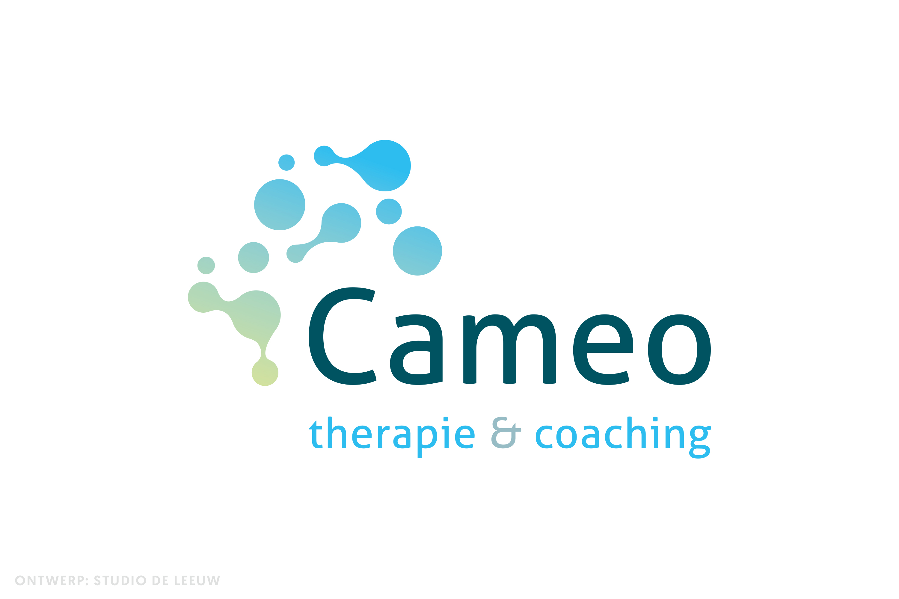 Cameo therapie en coaching